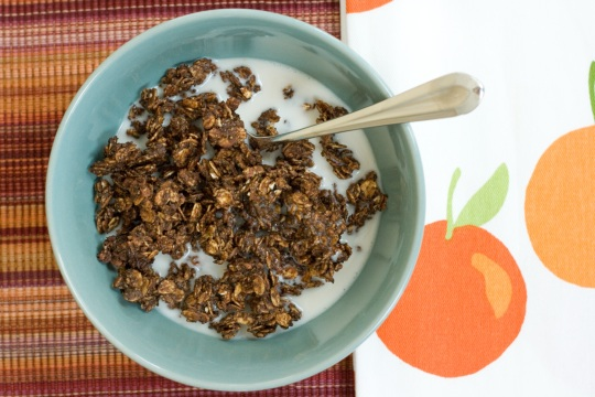 Chocolate Granola Crunch Cereal
